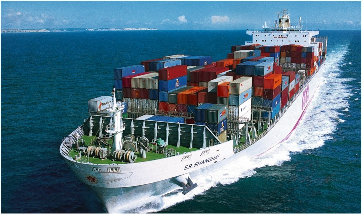 Container Carriage Risks in Maritime Trade