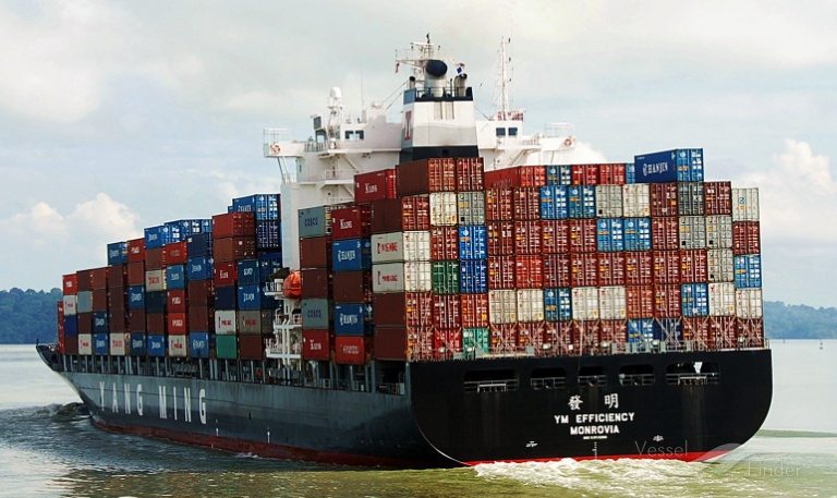 "Containers Overboard! How can I Efficiently Protect my Rights – MV ""YM Efficiency"""